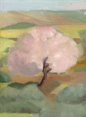 My Almond Tree