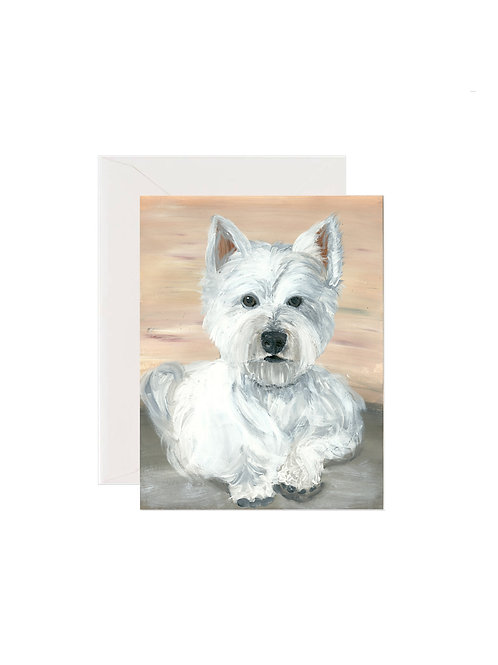 Frankie - West Highland White Terrier