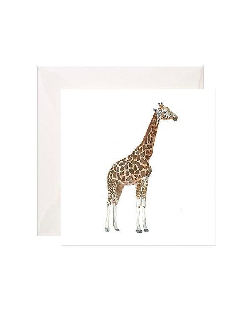 Giraffe Gift Enclosures