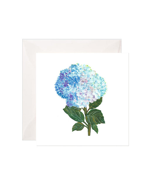 Dark and Light Blue Hydrangea Gift Enclosures