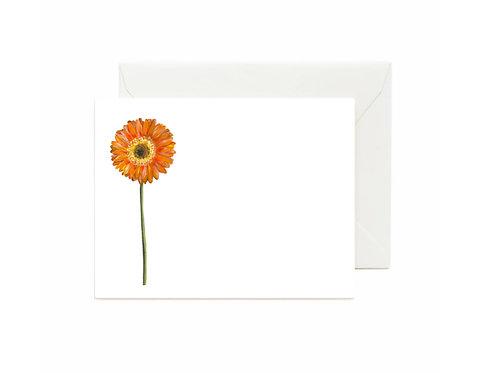 Gerbera Daisy Flat Note Cards