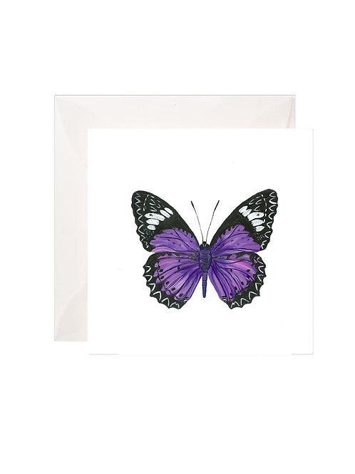 Purple Butterfly Gift Enclosures