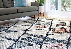 סלון מעוצב עם שטיח מרוקאי