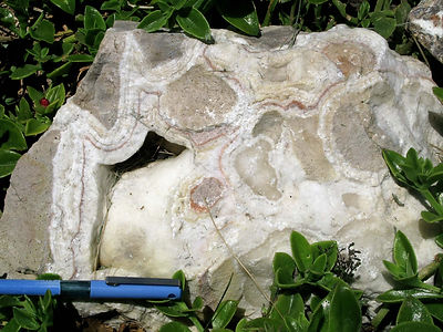 משקעים במערות נטיפים מהרי יהודה