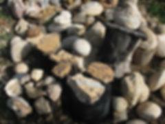 אבני גיר ומאובנים, ממקומות שונים בנגב. מלמדים על הופעת החיים על פני כדור הארץ