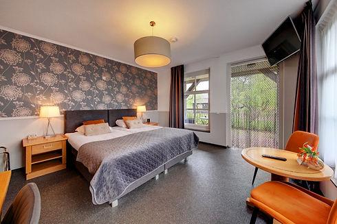 Ruime kamer met terras, prive sanitair, bureau, zithoek en Smart TV met Netflix