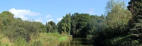 Natuurgebied Biesland 's Gravenmoer