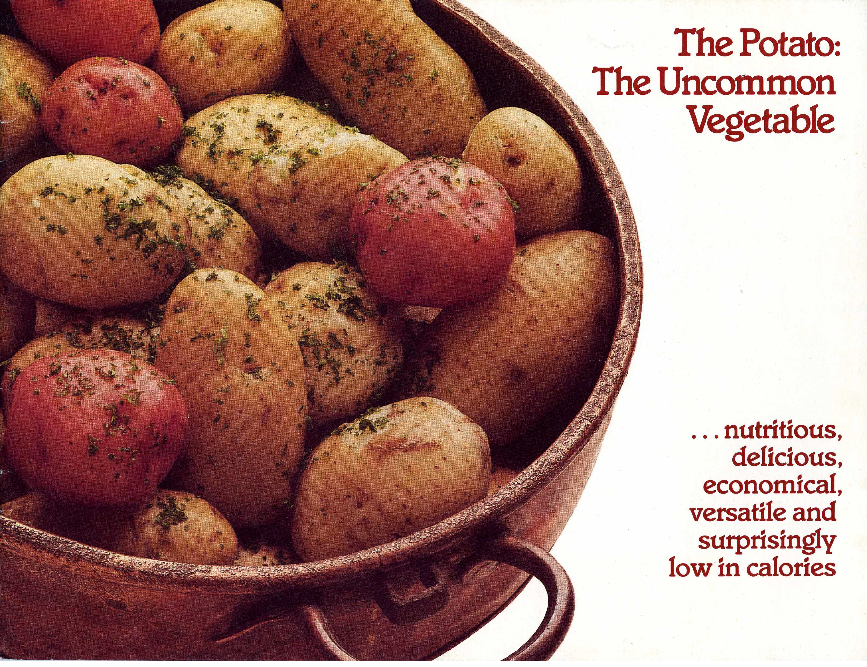 Potato Book cover