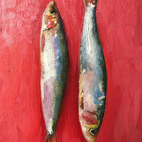 Sardines, oil on board, 15x20cm, SOLD
