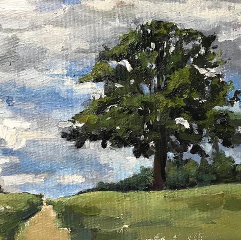 """Oak Tree, 5x7"""", oil on board"""
