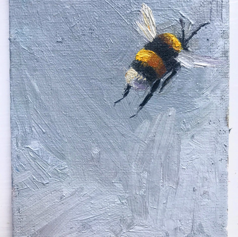 SOLD, Bumble grey, 10x12cm, oil on canva
