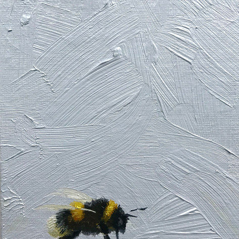 Bumble Commission, NFS