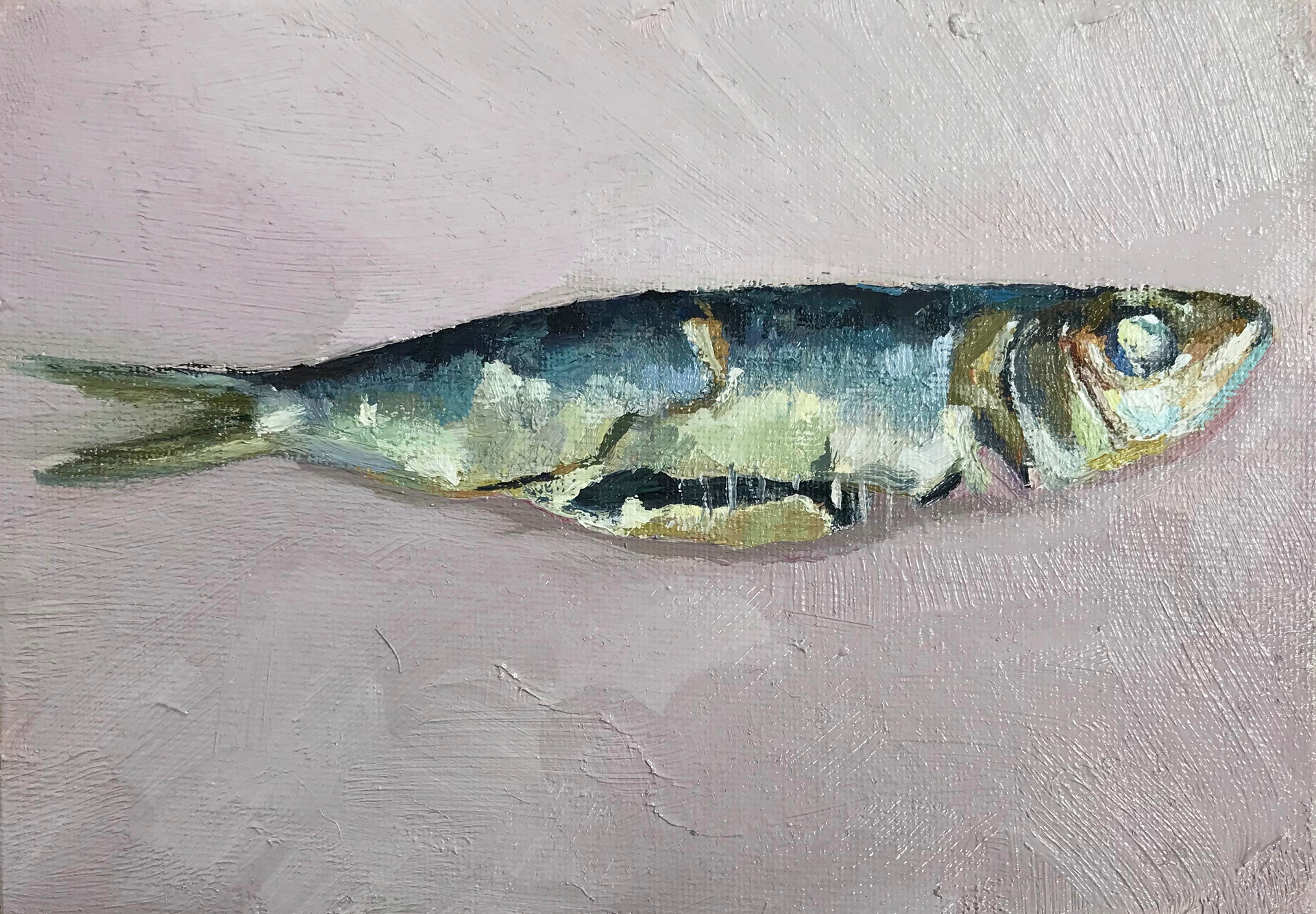 Cooked Sardine