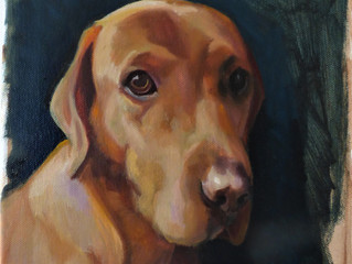 Pet Portraits on Etsy