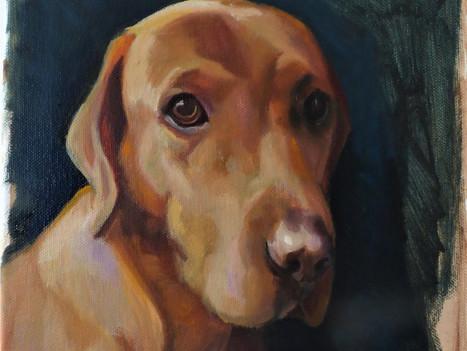 Pet Portraits on Etsy
