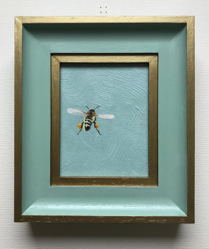 Honey Bee SOLD
