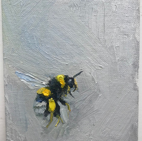 SOLD, Grey Bumble 1, oil on canvas board