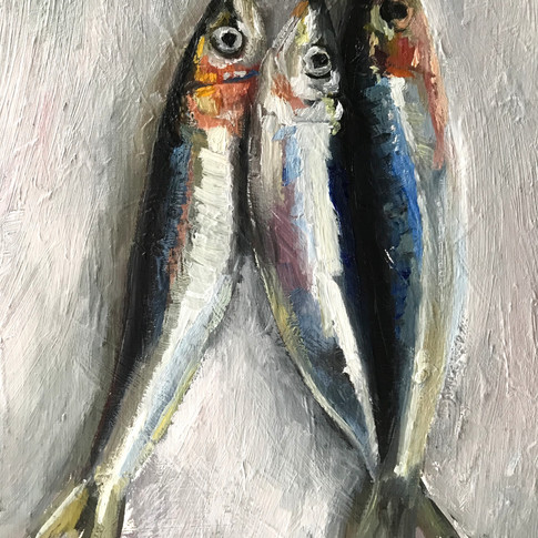 Sardines SOLD