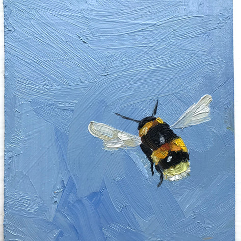 Sold, Bumble no.5, oil on panel, 10x12cm