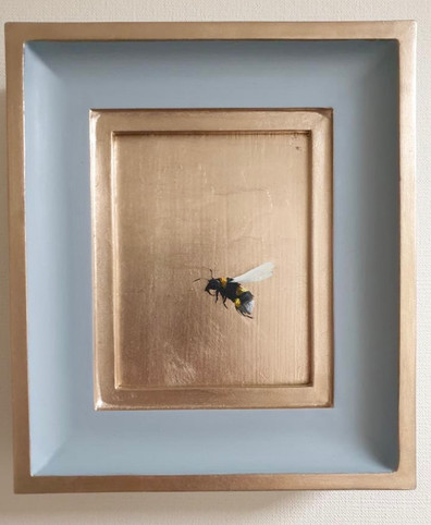 """SOLD China Blue bumble, Oil on 22 carat moon gold leaf, 7x8"""" framed"""