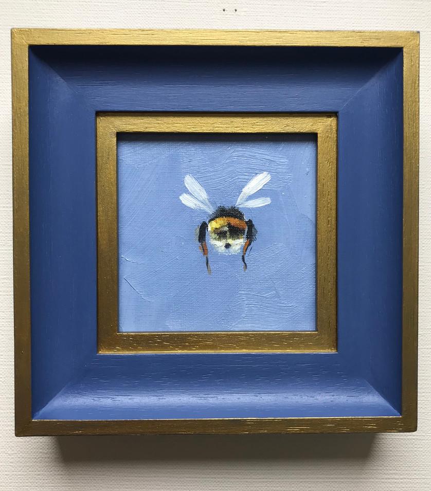Cornflower Blue Bumble Butt SOLD