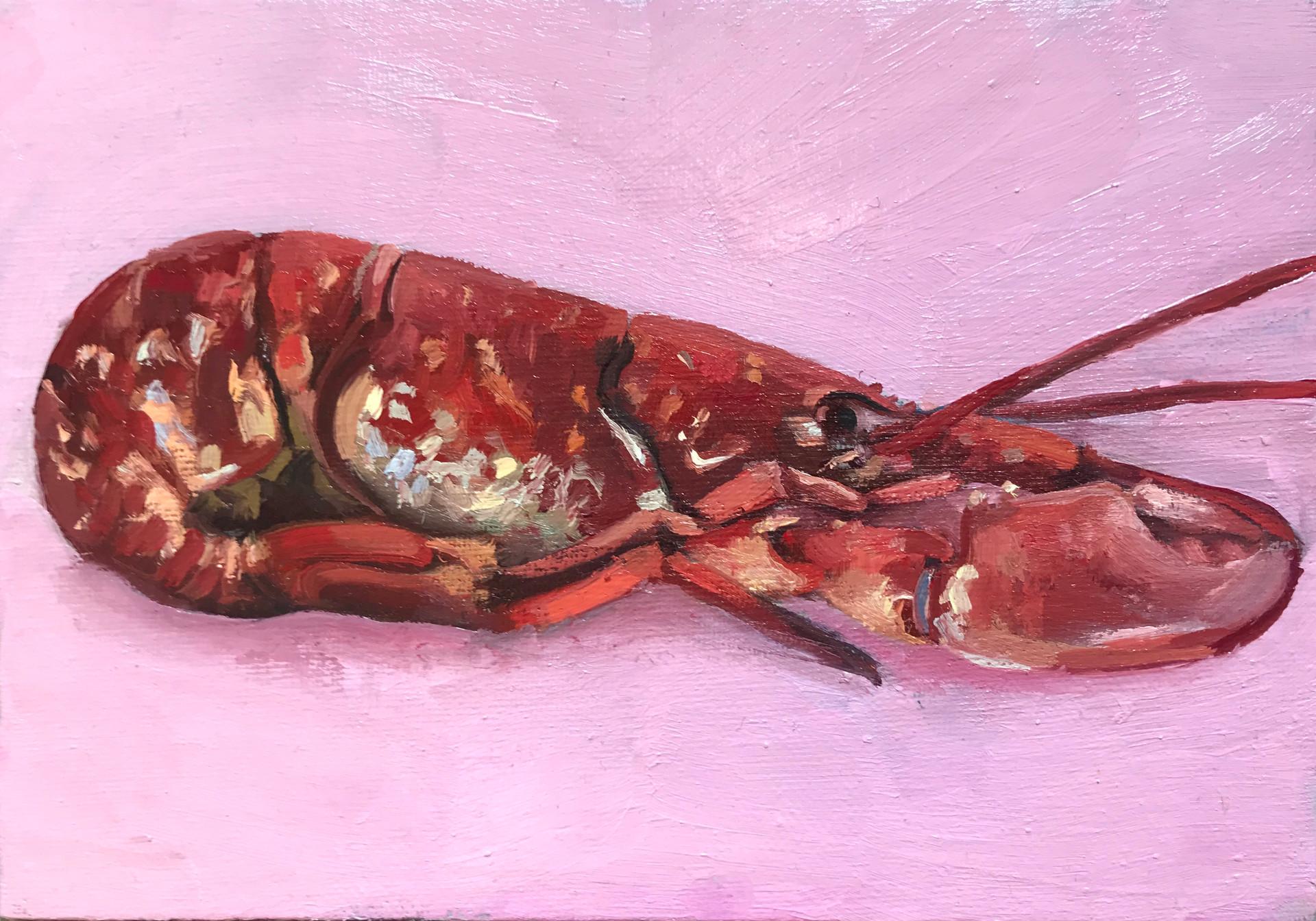 Pink Lobster