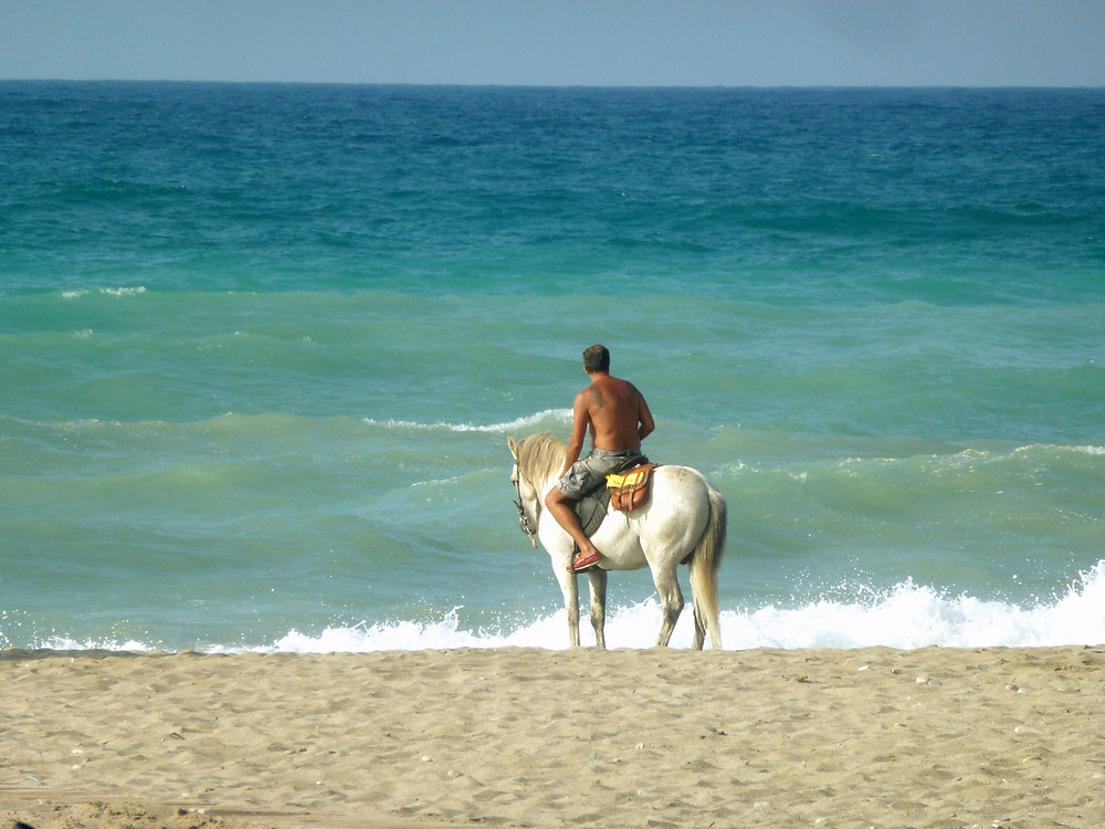 Horseback riding at the beach in Curacao