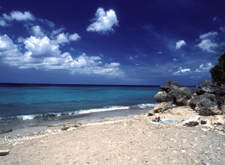 9 Reasons Why Curacao Island Should be on Your Vacation Bucket List!
