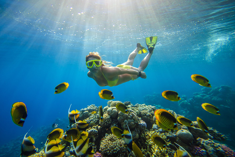 Snorkel, Things to do in Curacao