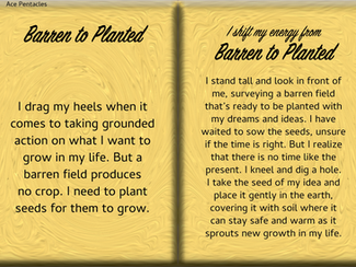How to Shift Your Energy from BARREN to PLANTED