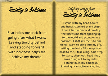 How to Shift Your Energy from TIMIDITY to BOLDNESS
