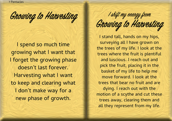 How to Shift Your Energy from GROWING to HARVESTING