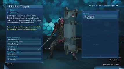 Elite Riot Trooper 2.png