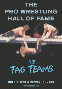 The Pro Wrestling Hall of Fame The Tag T