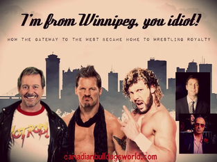 I'm From Winnipeg, You Idiot