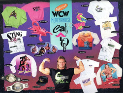 WCW Merch From 92