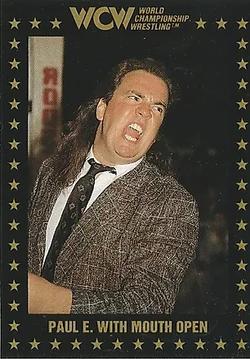 WCW Championship Marketing ing