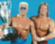 Sting%20and%20Lex%20Luger_edited.jpg