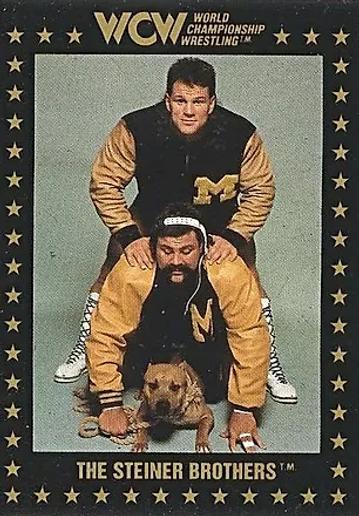 Steiner Brothers.webp
