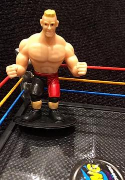 WWE Superstar Figurines