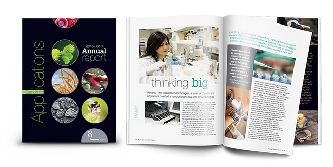 AR_2013-2014_ThinkBig_Cover__wix.png