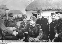 Waffen-Gebirgsjaeger Divisionen der SS 1940-45