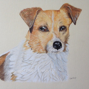 Bruffy Portrait