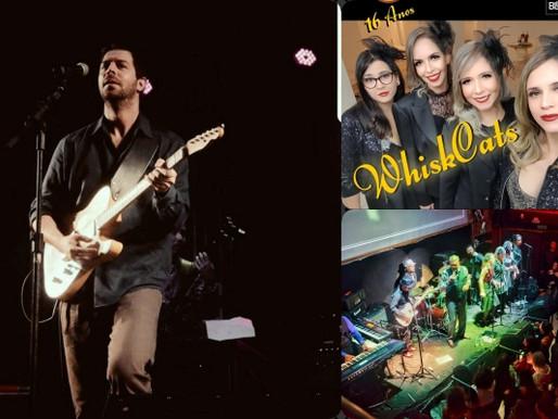"""Evento -  """"Blues At Home"""": noite especial de blues nesta sexta-feira"""