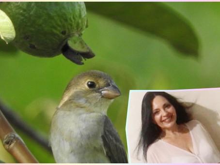 "Poesia - ""Quero te contar um segredo"", por Mirian Camacho"