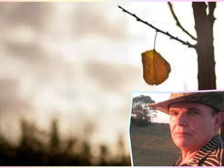 """Poesia – """"A Última Folha"""", por Gerson Marques Camargo"""