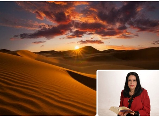 """Poesia - Em """"Deserto"""" a visão poética de Raquel Naveira"""