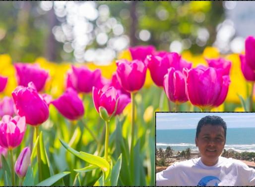 Poesia - Primavera na visão do poeta Valdeci Martins