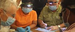 Dental training 2