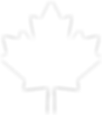 White Canadian maple leaf icon